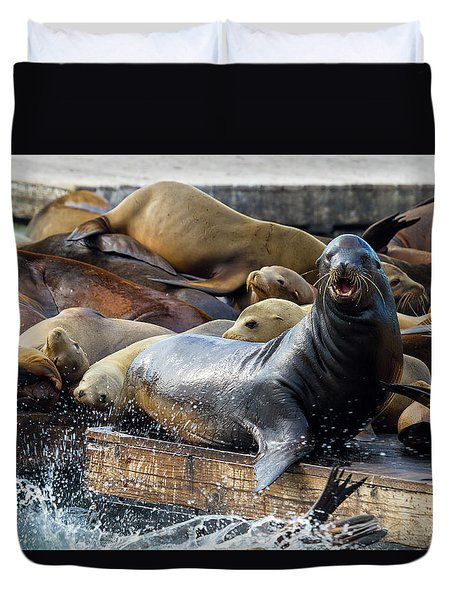 Sea Lions On The Floating Dock In San Francisco Duvet Cover