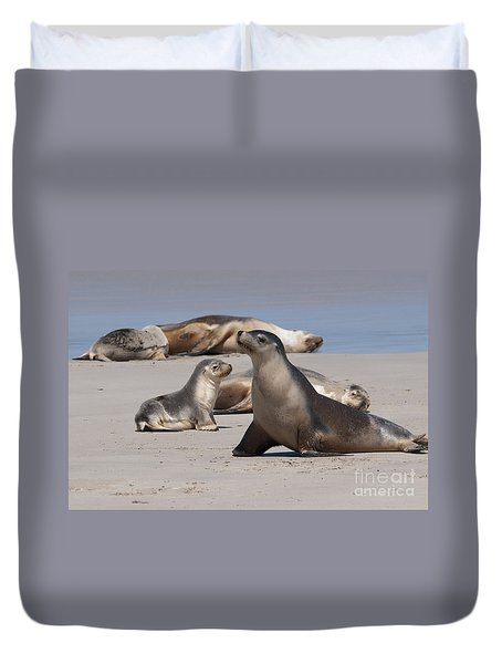 Duvet Cover featuring the photograph Sea Lions by Werner Padarin