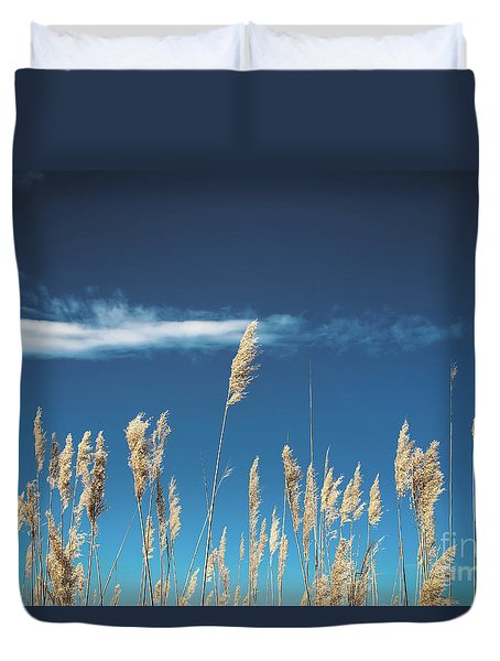 Duvet Cover featuring the photograph Sea Oats On A Blue Day by Colleen Kammerer