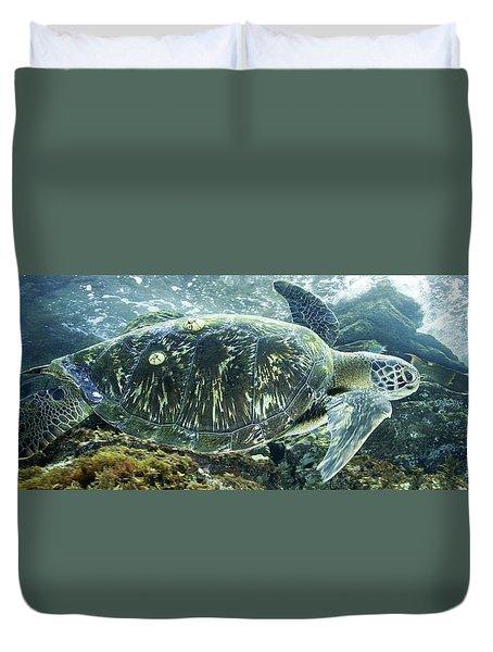 Sea Of Cortez Green Turtle Duvet Cover