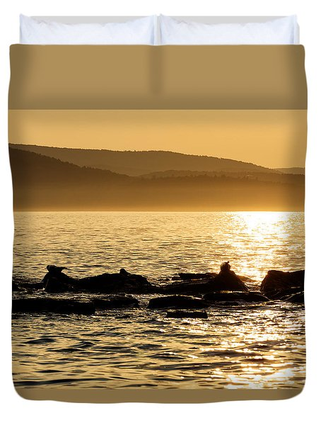 Sea Of Seals Duvet Cover by Gary Smith