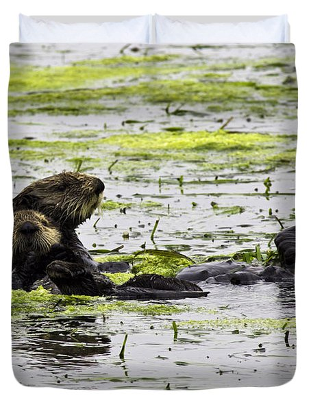 Sea Otters 1 Duvet Cover