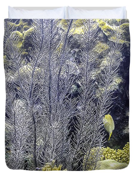 Sea Plumes Coral 2 Duvet Cover