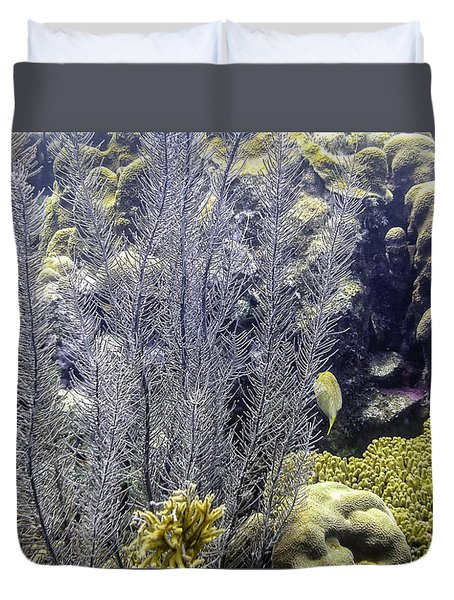 Sea Plumes Coral 2 Duvet Cover by Perla Copernik