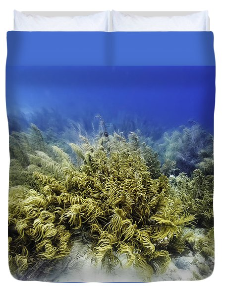 Sea Rod Corals  Duvet Cover by Perla Copernik