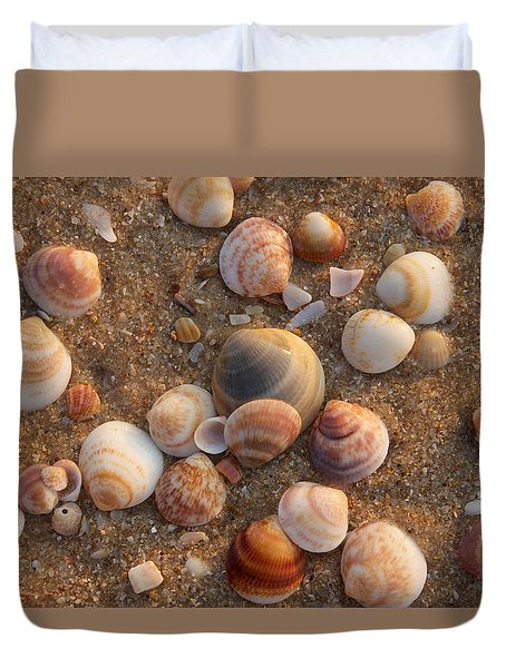 Sea Shells At Sunset Duvet Cover