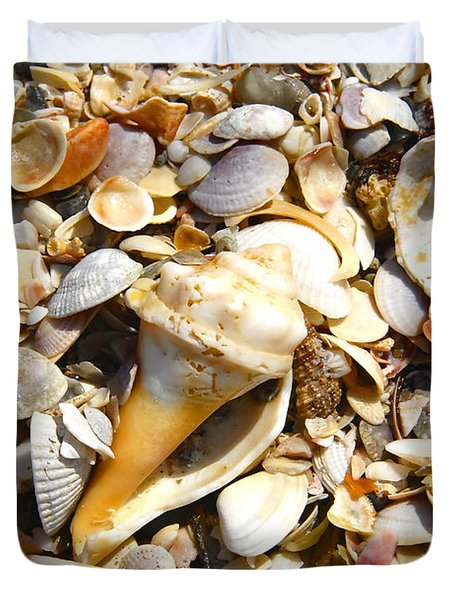 Sea Shells Duvet Cover by David Lee Thompson