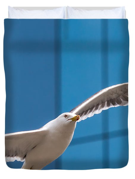 Seabird Flying On The Glass Building Background Duvet Cover