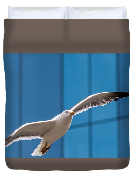 Seabird Flying On The Glass Building Background Duvet Cover