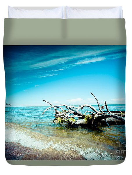 Seacost With Old Tree In Water Kolka Duvet Cover