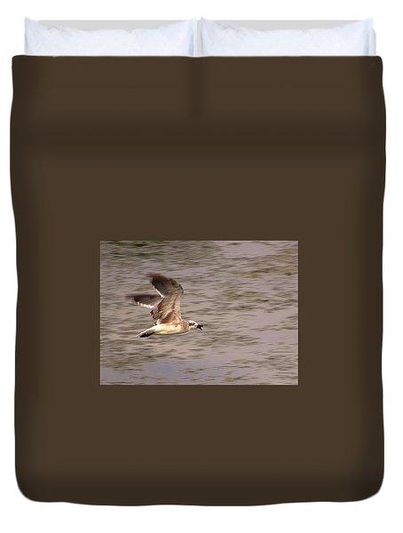 Seagull Flight Duvet Cover