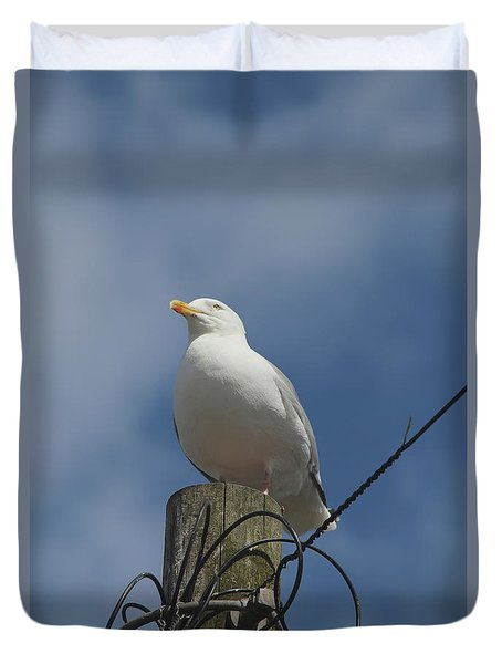 Seagull Perching. Duvet Cover