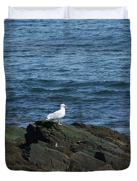 Duvet Cover featuring the digital art Seagull On The Rocks by Barbara S Nickerson