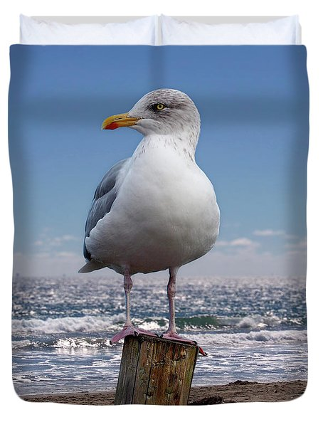 Seagull On The Shoreline Duvet Cover