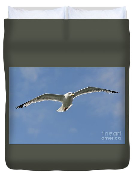 Seagull Patrol Duvet Cover by Steev Stamford