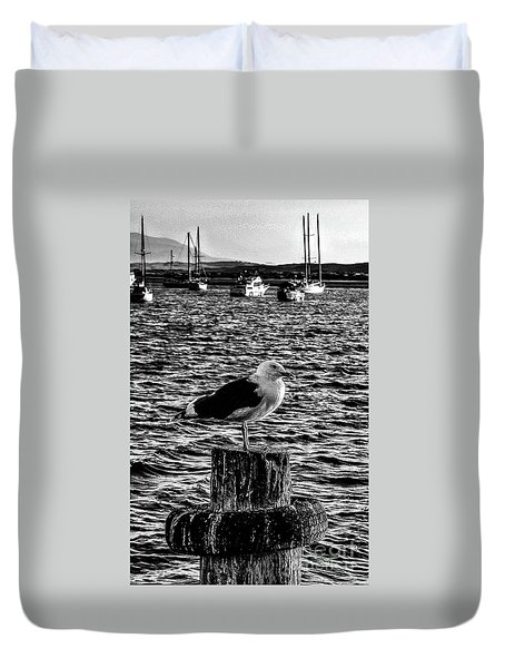 Seagull Perch, Black And White Duvet Cover