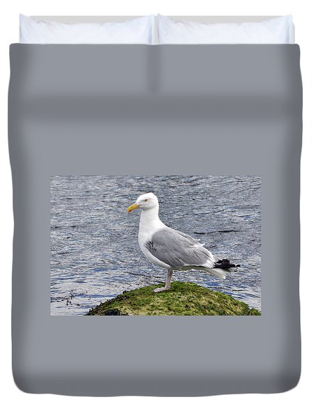 Duvet Cover featuring the photograph Seagull Posing by Glenn Gordon