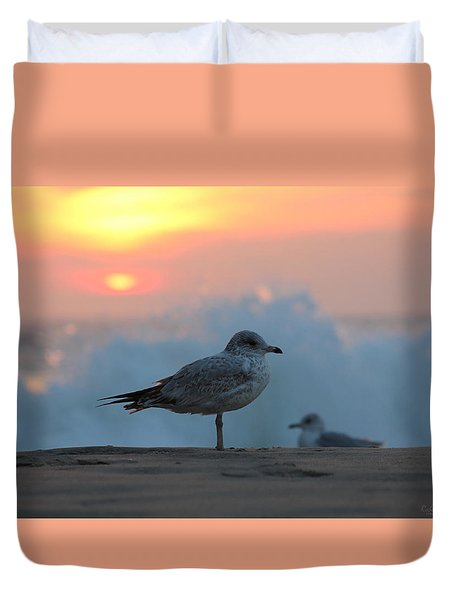 Seagull Seascape Sunrise Duvet Cover