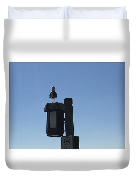 Seagull Sentry Duvet Cover by Russell Keating