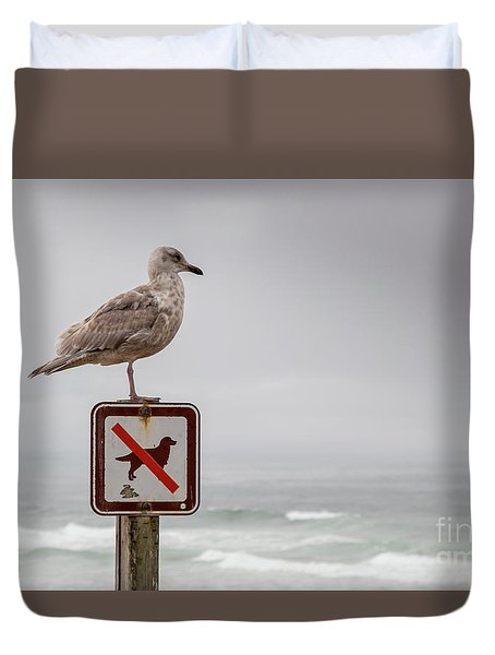 Seagull Standing On Sign And Looking At The Ocean Duvet Cover