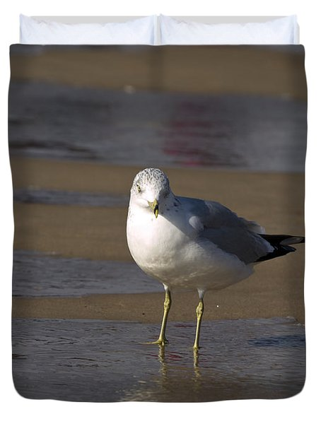 Duvet Cover featuring the photograph Seagull Standing by Tara Lynn