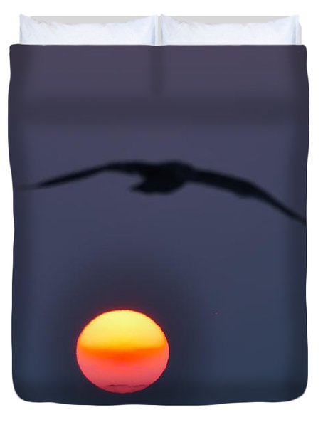 Seagull Sun Duvet Cover by Bill Cannon