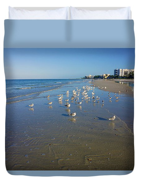 Seagulls And Terns On The Beach In Naples, Fl Duvet Cover