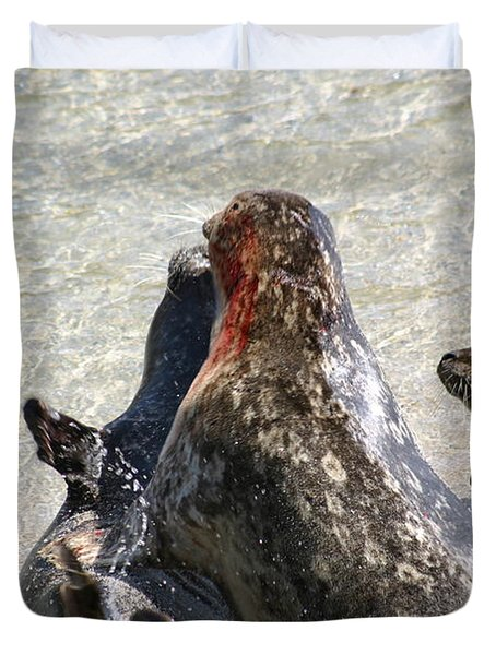 Seal Fight Duvet Cover by Anthony Jones