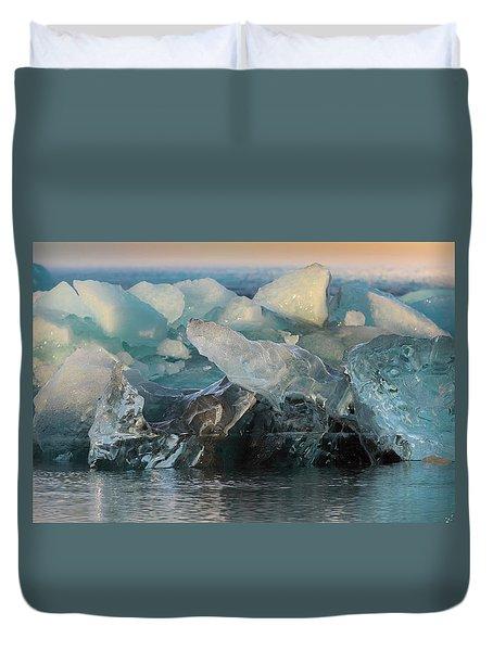 Seal Nature Sculpture Duvet Cover