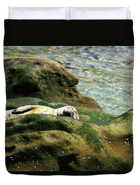 Duvet Cover featuring the photograph Seal On The Rocks by Anthony Jones