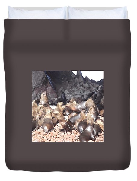 Ballestas Islands' Sealions Duvet Cover
