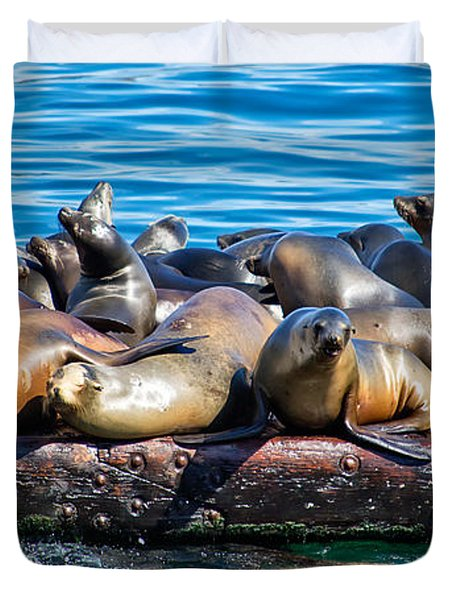 Sealions On A Floating Dock Another View Duvet Cover