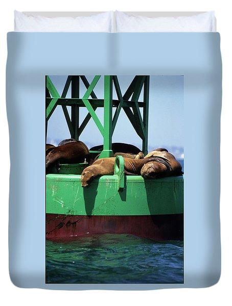 Seals On Channel Marker Duvet Cover
