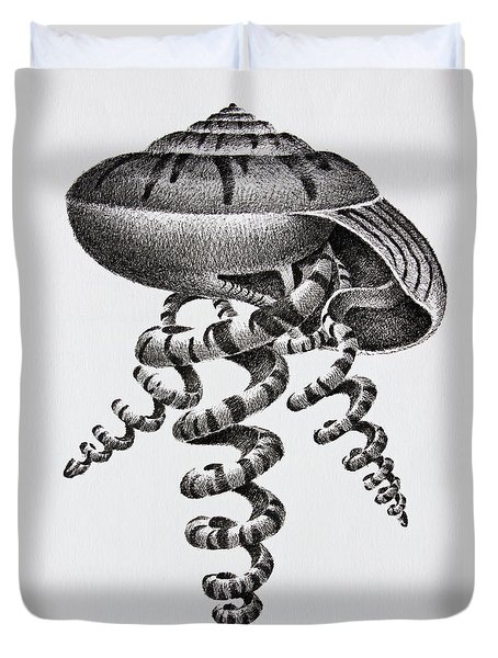 Seashell Forms Duvet Cover by James Williamson