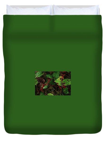 Season Color Duvet Cover