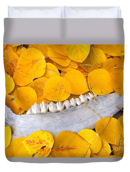 Seasons Past Duvet Cover