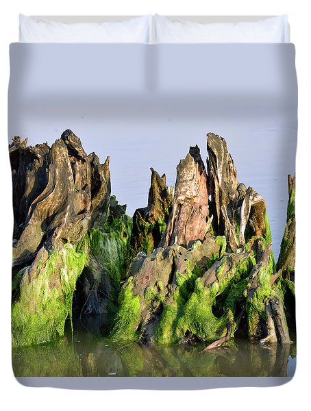 Seaweed-covered Beach Stump Duvet Cover by Bruce Gourley