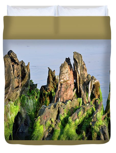 Seaweed-covered Beach Stump Mountain Range Duvet Cover by Bruce Gourley