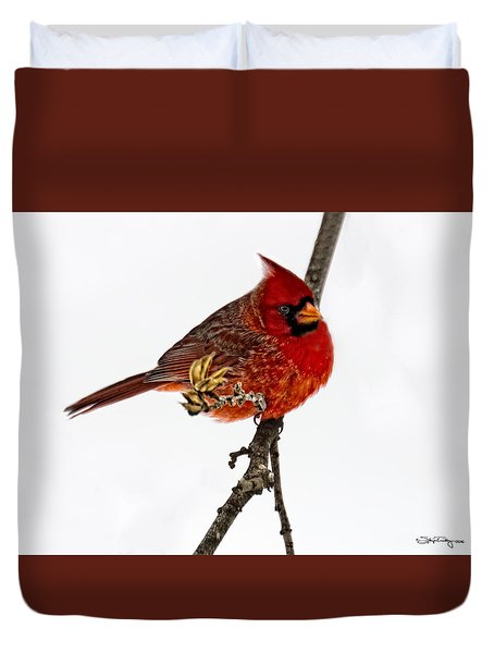 Duvet Cover featuring the photograph Second Cardinal by Skip Tribby