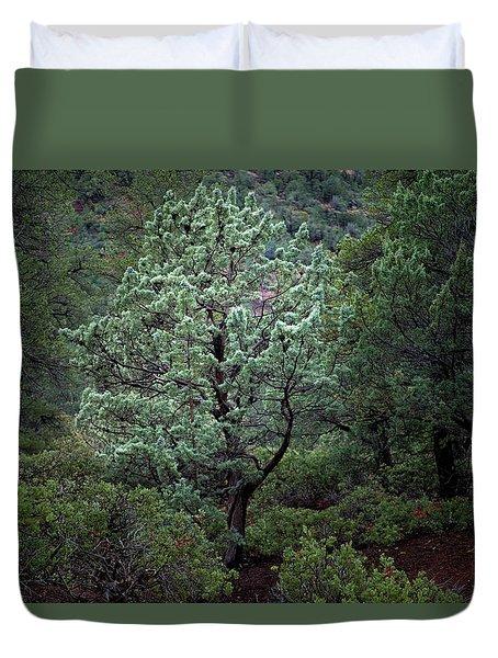 Sedona Tree #1 Duvet Cover