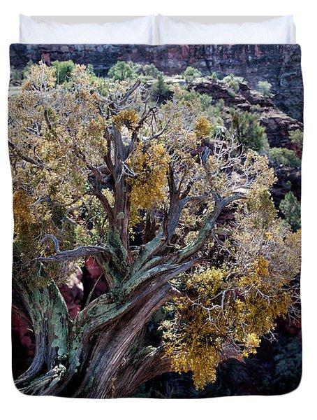 Sedona Tree #2 Duvet Cover