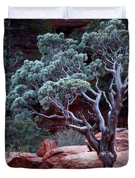 Sedona Tree #3 Duvet Cover