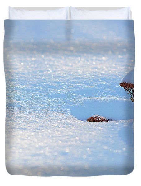 Sedum Sprout In Winter-1 Duvet Cover