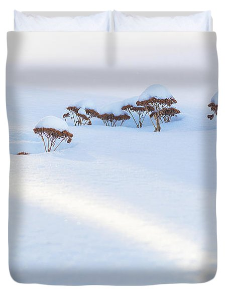 Sedum Sprouts In Winter-8210 Duvet Cover