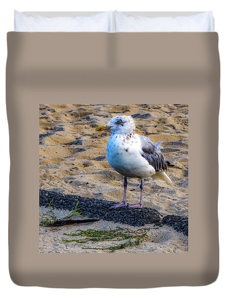 Duvet Cover featuring the photograph See The Gull by Kendall McKernon