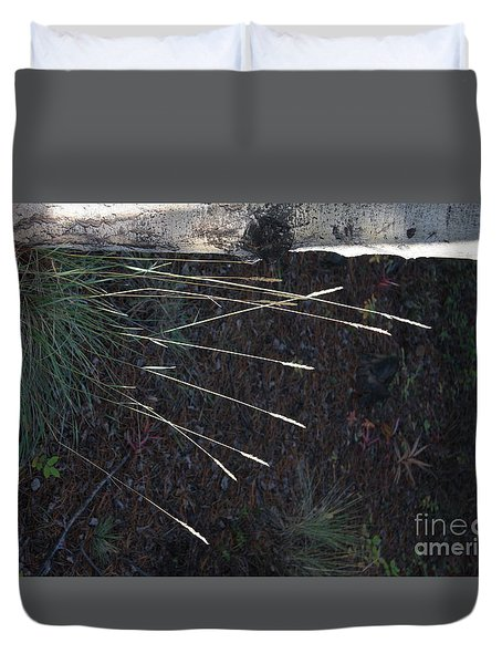 Duvet Cover featuring the photograph Seed Head Rocket Salute by Brian Boyle