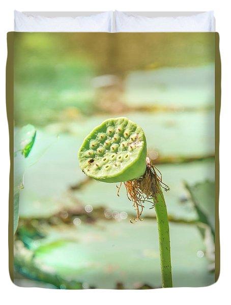 Seed Pod Duvet Cover by Pamela Williams