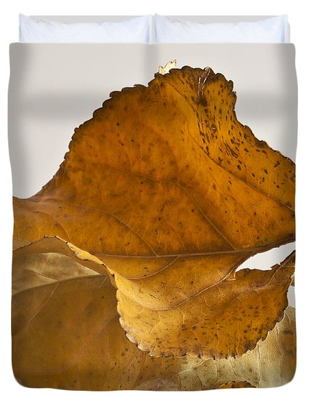 Seeing Double Autumn Leaf  Duvet Cover