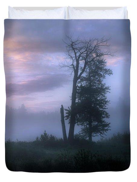 Sentinels In The Valley Duvet Cover by Dan Jurak