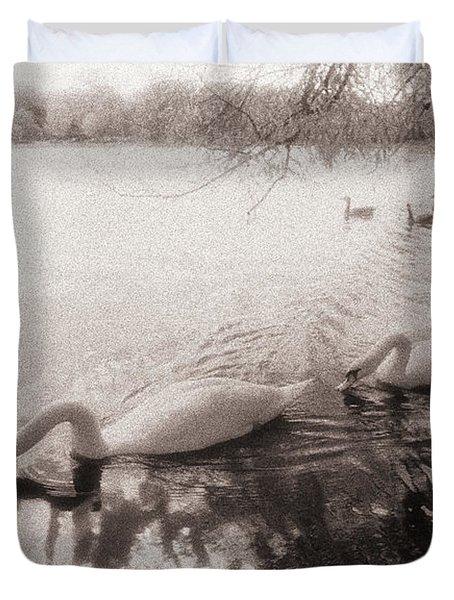 Sepia Swans Duvet Cover